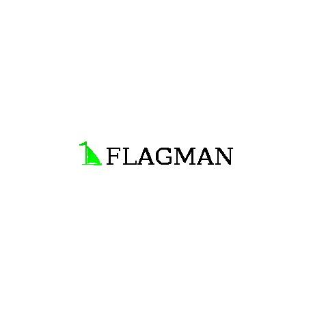 Flagman kavinė